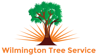 Wilmington Tree Service